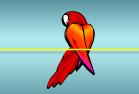 Papagaio Vermelho