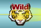 Tigre Wild