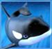 Orca Wild