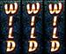 3wilds