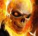 Ghost Rider Skull Wild